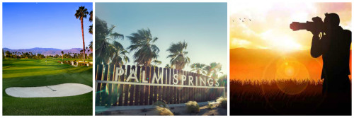 151113.2 Palm Springs collage