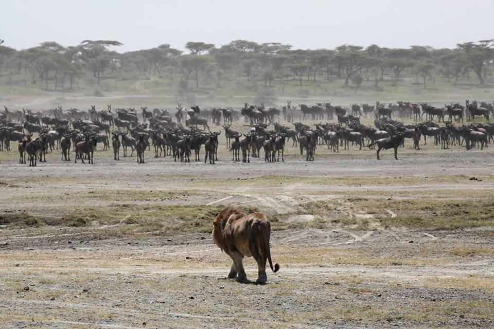 2015 Africa photo tour landscape (9)