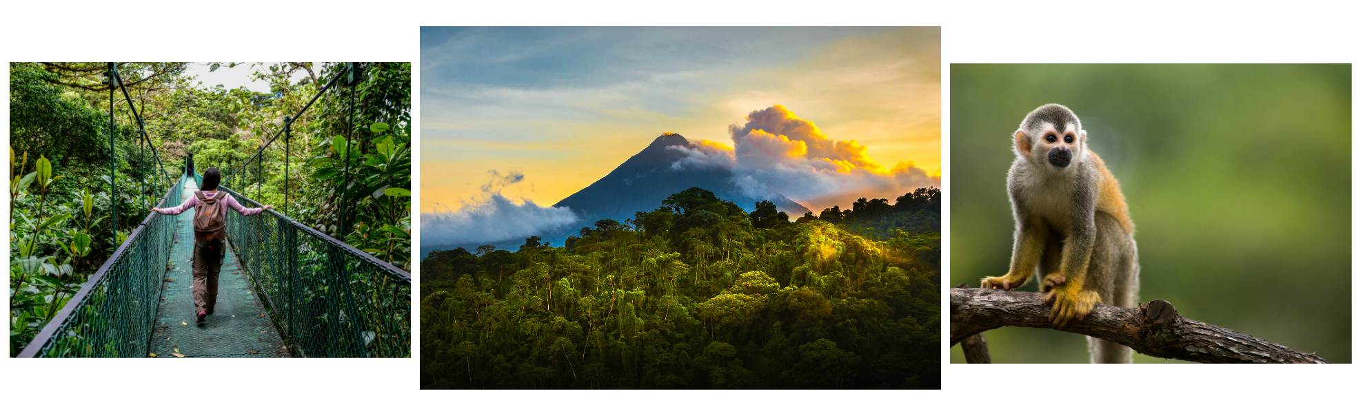 Costa Rica Travel Writing Expedition Alert List