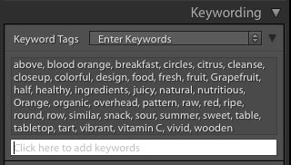 Lightroom keywording panel makes tagging stock photos easy