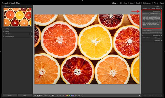 stock photo keywording in Adobe Lightroom
