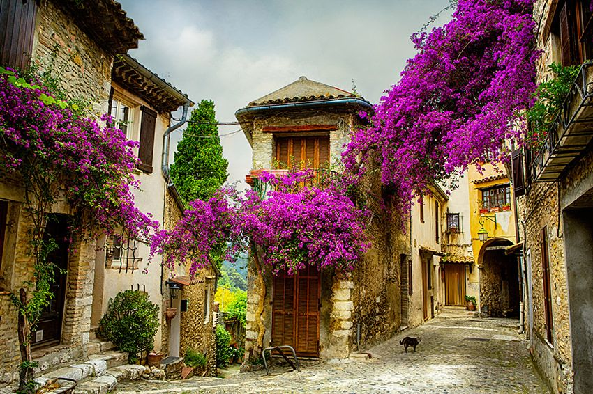 A photograph of the streets of Provence