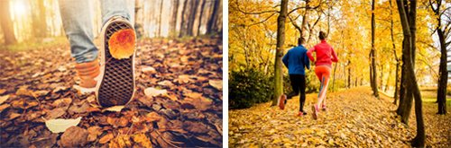 stock photos showing fall outdoor activities