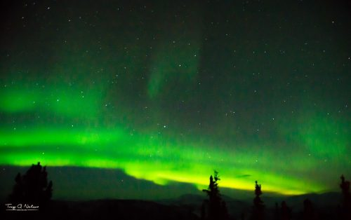 Professional photographer Troy Nelson took this money-making photo of the Northern Lights