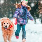 winter photograph stock photography
