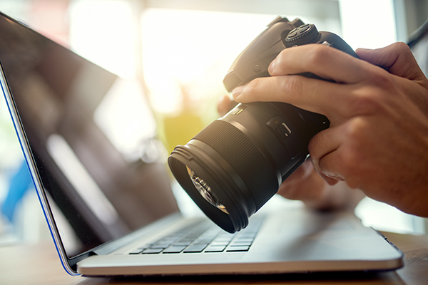 A stock photographer looks at images on the camera