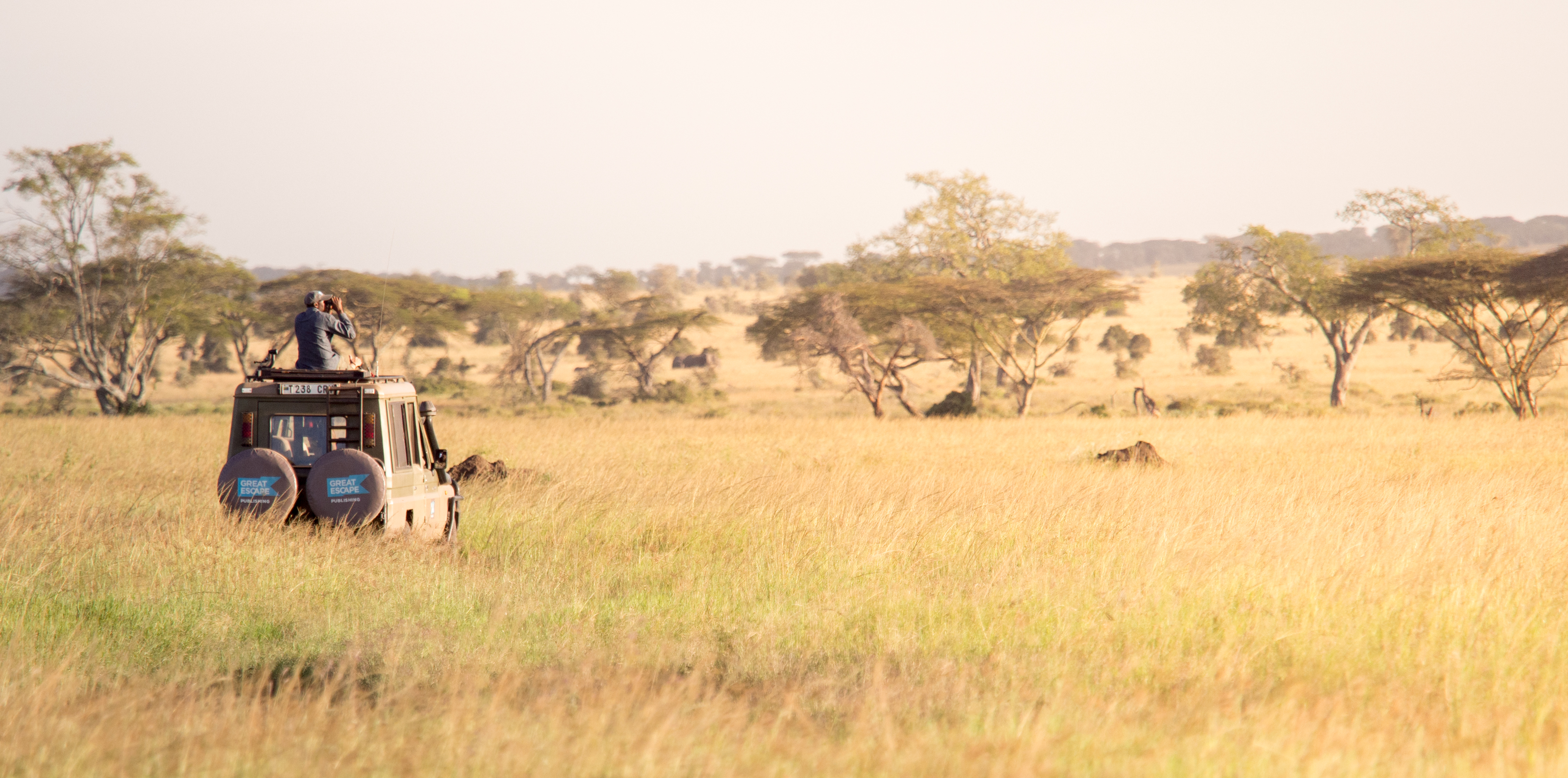 Another stop on our African photo safari is Central Serengeti