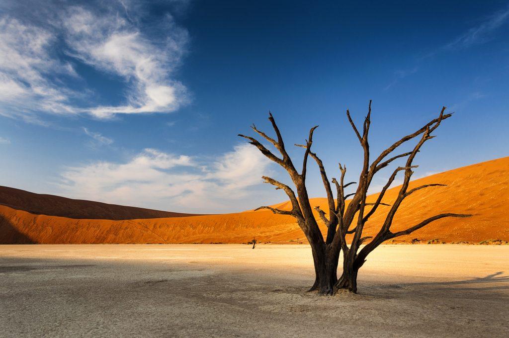Sand ridges in Namib Naukluft National Park
