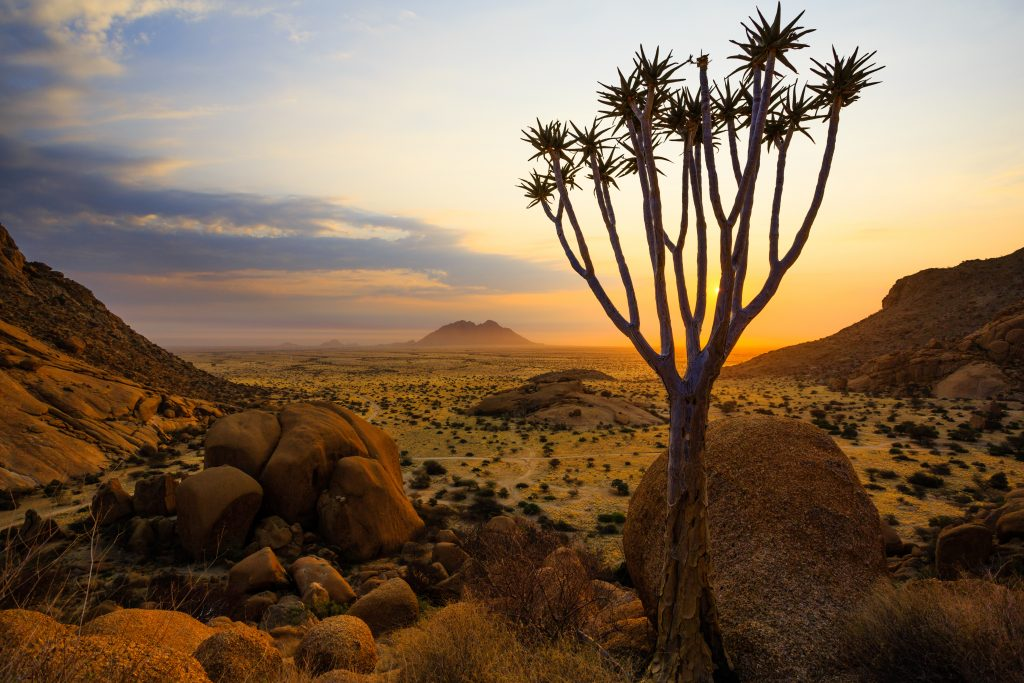 Our Photo Safari stops in Quiver Tree Forest and the Giant's Playground in Namibia