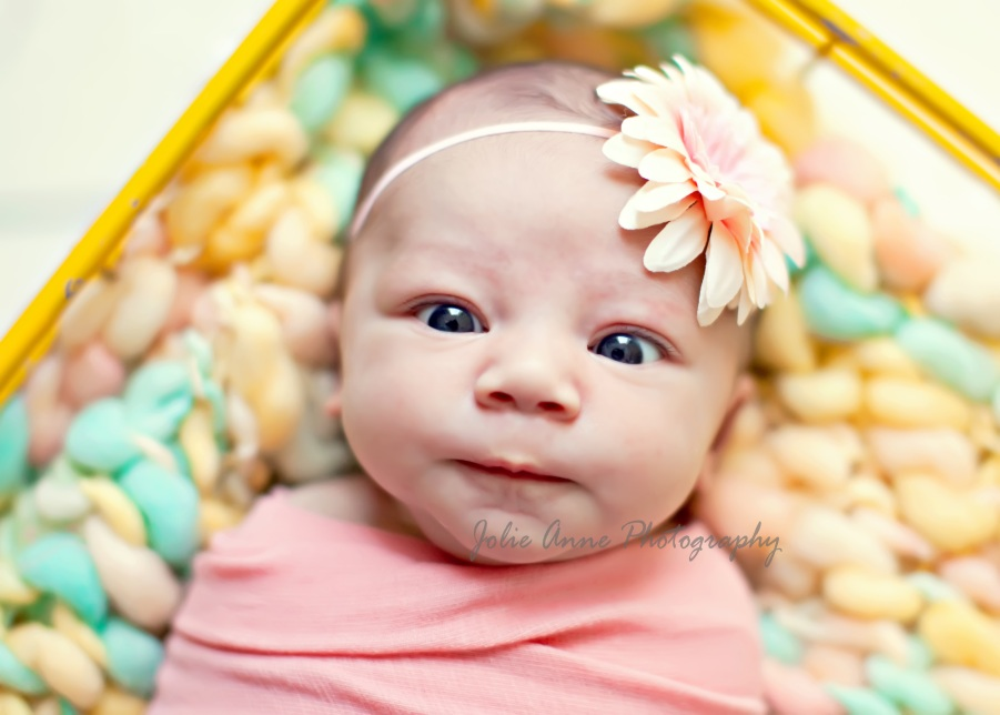 How to pose and photograph newborns the photographers life