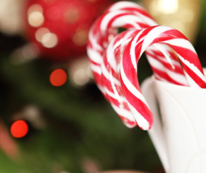 Christmas Candy Canes by the Christmas tree